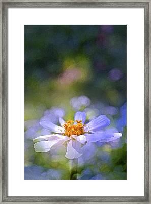 Color 121 Framed Print by Pamela Cooper