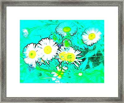 Color 7 Framed Print by Pamela Cooper