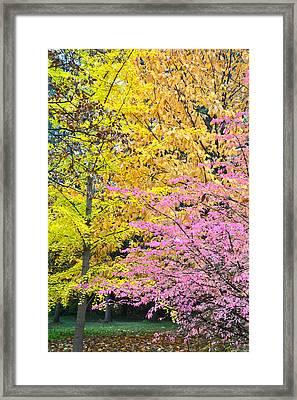 Color Blend Framed Print