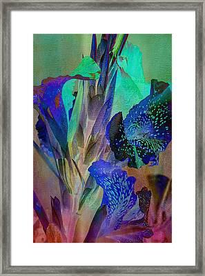 Color Bound Framed Print by Linda Dunn