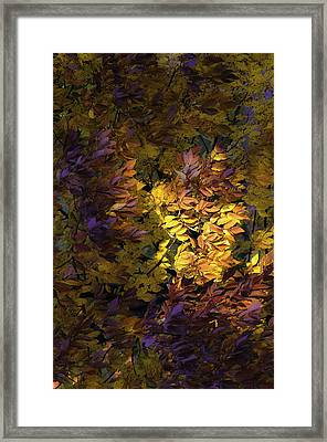 Framed Print featuring the photograph Color Calls by Steven Santamour