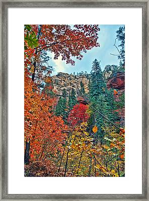 Color Cliff Framed Print by Brian Lambert