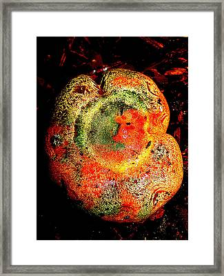 Framed Print featuring the photograph Color Collage Mushroom by John King