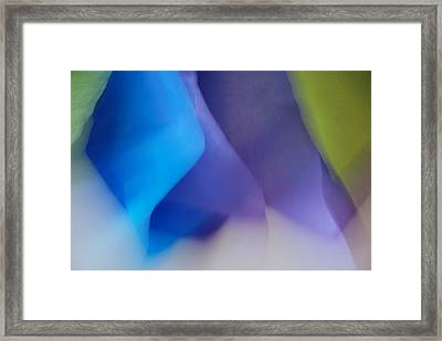 Framed Print featuring the photograph Color Crimp by Lorenzo Cassina