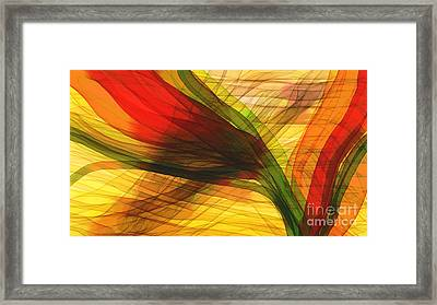 Color Flow Framed Print by Hilda Lechuga