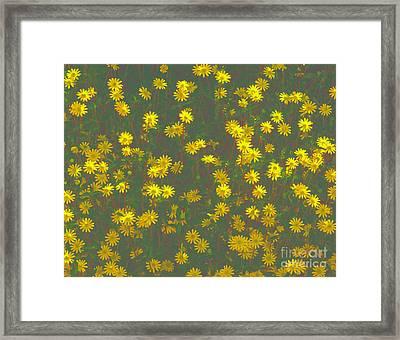 Color Flower Wall Framed Print