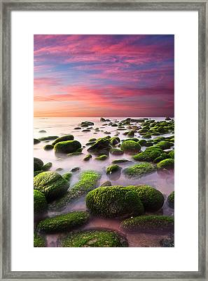 Color Harmony Framed Print