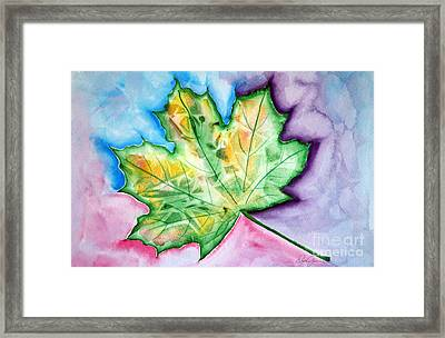 Color Leaf Framed Print by Dani Abbott