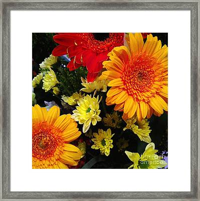Color Me Bright Framed Print