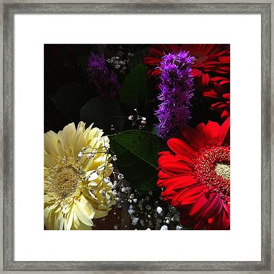 Color Me Dark Framed Print