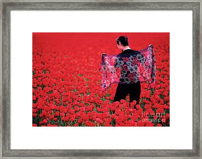 Color Me Tulip Framed Print by Bob Christopher