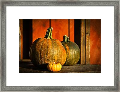 Aaron Berg Photography Framed Print featuring the photograph Color Of Fall by Aaron Berg