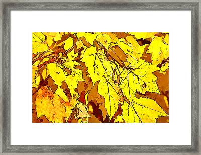 Color Of Fall Framed Print by Ludwig Keck