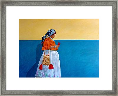 Color Of Mexico Framed Print