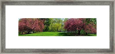 Framed Print featuring the photograph Color Of Spring by Yue Wang