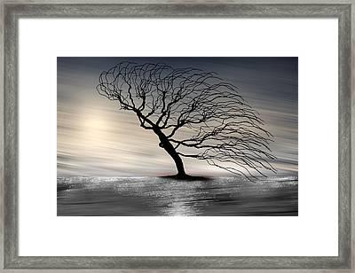Color Of The Wind Framed Print