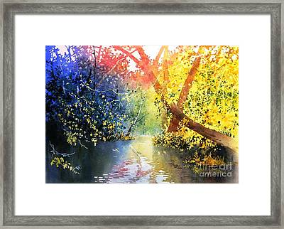 Color Of Trees Framed Print