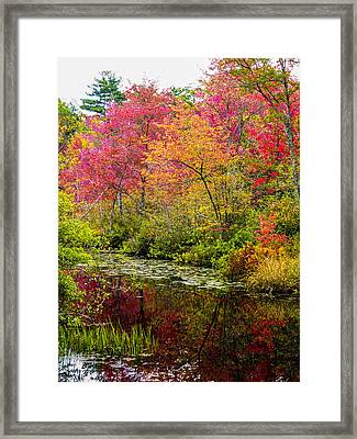 Framed Print featuring the photograph Color On The Water by Mike Ste Marie
