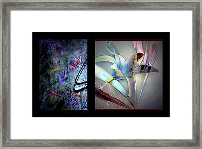 Color Palete Of A Pink And Blue Lily Framed Print