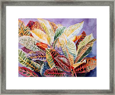 Color Patterns - Crotons Framed Print by Roxanne Tobaison