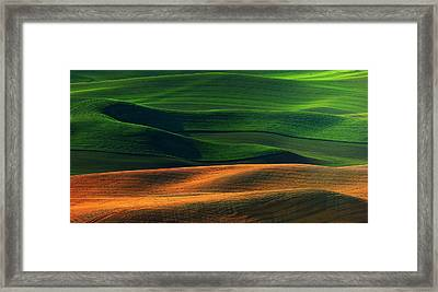 Color Framed Print