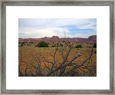Color Rocks Framed Print