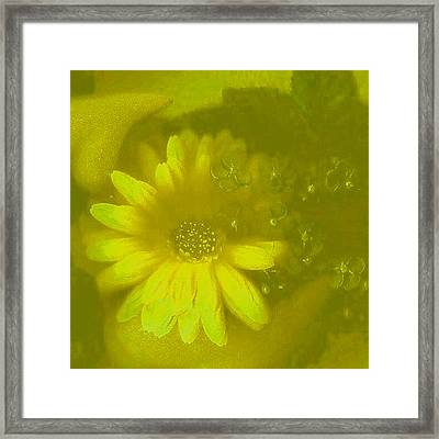 Color Suprise Framed Print by Pepita Selles