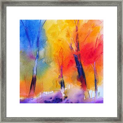 Color Symphony Of The Wodd Framed Print by Alessandro Andreuccetti