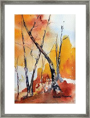 Colorado Afternoon Framed Print