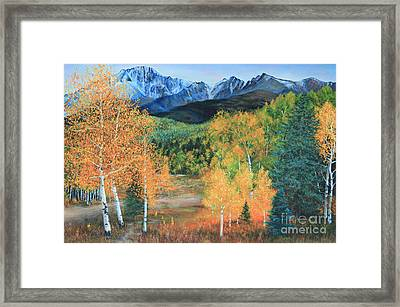 Colorado Aspens Framed Print by Jeanette French