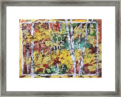 Colorado Batik Framed Print