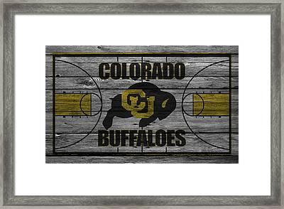 Colorado Buffaloes Framed Print by Joe Hamilton