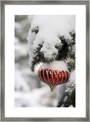 Colorado Christmas 2 Framed Print