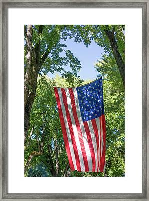 Colorado, Crawford Framed Print by Jaynes Gallery