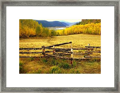 Colorado Gold 2 Framed Print by Marty Koch