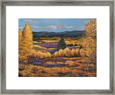 Colorado Framed Print by Johnathan Harris