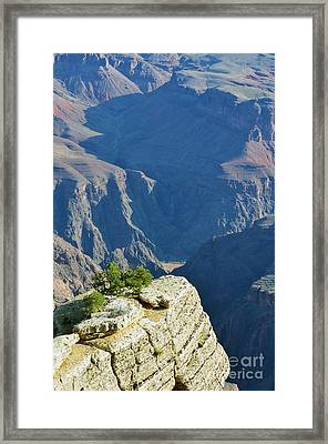 Colorado River South Rim Overlook Grand Canyon National Park Vertical Framed Print by Shawn O'Brien