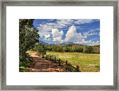 Colorado Scenic Pathway Framed Print by Cheryl Davis