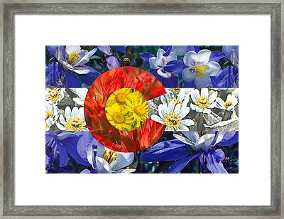 Colorado State Flag With Wildflower Textures Framed Print by Aaron Spong