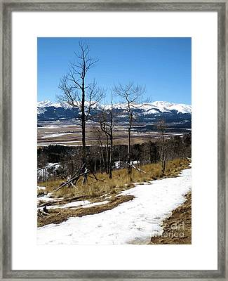 Colorado Trail 1 Framed Print by Claudette Bujold-Poirier