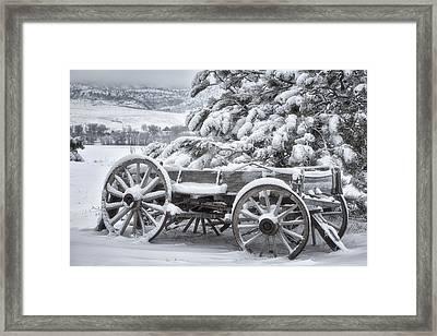 Colorado Wagon Framed Print by Darren  White