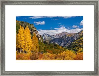 Colorado's Carpet Of Color Framed Print
