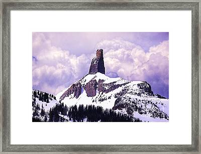 Colorados Lizard Head Framed Print
