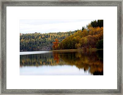 Colored By Fall Framed Print