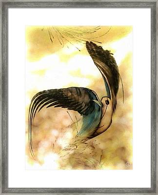 Colored By The Sun Framed Print
