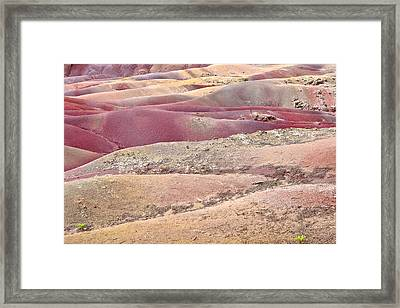 Colored Earth Framed Print by Tom Gowanlock