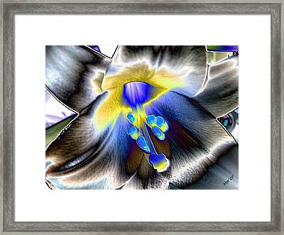 Colored Foil Lily Framed Print