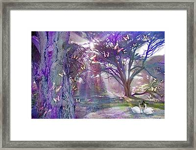 Colored Forest Framed Print by Alixandra Mullins