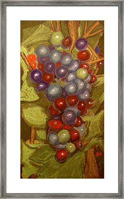 Colored Grapes Framed Print