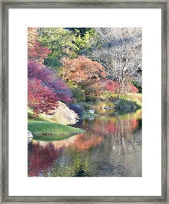 Colored Reflections Framed Print by Lena Hatch